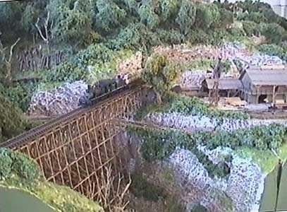ferrovie forestali americane